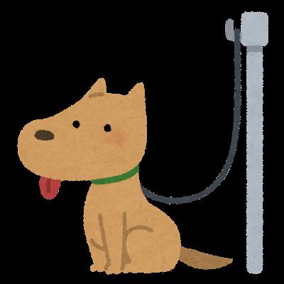 犬のリード
