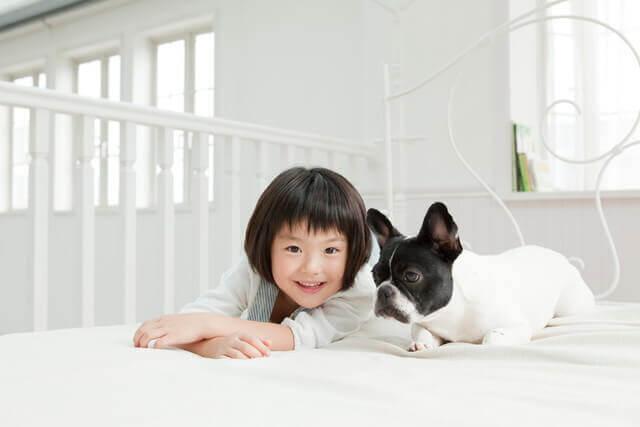子どもが犬をしつける方法