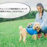 ドッグトレーニング通信講座ランキング|通信教育で犬のしつけのプロに!